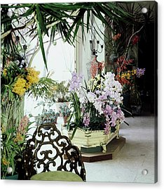 Orchids In Enid Annenberg Haupt's Home Acrylic Print