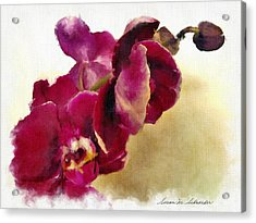 Orchids No. 5 Acrylic Print