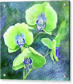 Orchids One Acrylic Print