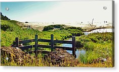 Oregon Beach 1 Acrylic Print