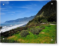 Oregon Coast Acrylic Print by Donald Fink