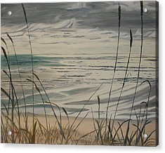Acrylic Print featuring the painting Oregon Coast With Sea Grass by Ian Donley