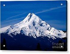 Oregon - Mt. Hood Acrylic Print by Terry Elniski
