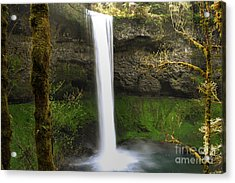 Oregon Waterfall Woodland Acrylic Print by Andrea Hazel Ihlefeld