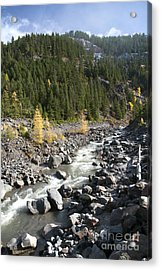 Oregon Wilderness II Acrylic Print by Peter French