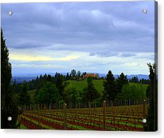 Acrylic Print featuring the photograph Oregon Wine Country by Debra Kaye McKrill