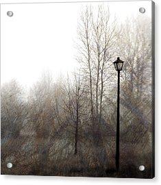 Oregon Winter Acrylic Print by Carol Leigh