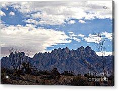 Organ Mountain Landscape Acrylic Print