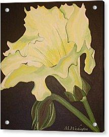 Organic 4 Acrylic Print by Megan Washington