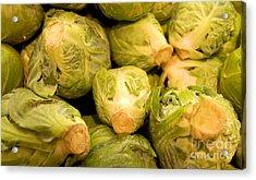 Organic Cabbage Acrylic Print