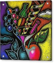 Organic Food Acrylic Print