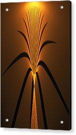 Oriental Vase Acrylic Print