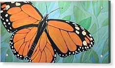 Original Abstract Painting Butterfly Print ... Monarch Acrylic Print by Amy Giacomelli