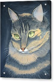 Original Cat Painting Acrylic Print by Norm Starks