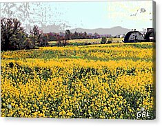 Acrylic Print featuring the painting Original Fine Art Digital Fields Yellow Flowers Maryland by G Linsenmayer