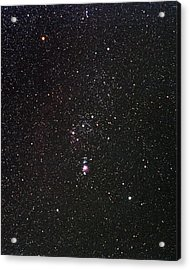 Orion Acrylic Print by Alan Ley