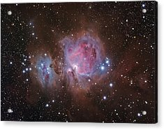 Orion's Sword Acrylic Print by Brian Peterson