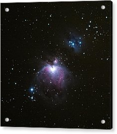 Orion's Sword In The Winter Sky Acrylic Print by Mike Berenson