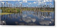 Orlando Wetlands Cloudscape 5 Acrylic Print by Mike Reid