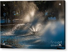 Ornamental Fountain In A Pond With Blurred Light Reflections Acrylic Print by Hannelore Baron
