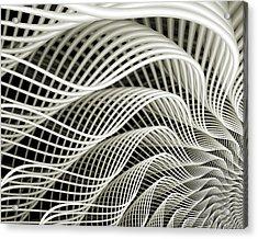 Oscillation Acrylic Print by Kevin Trow