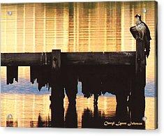 Osprey Acrylic Print by Cheryl Lynne  Leech-Johnson
