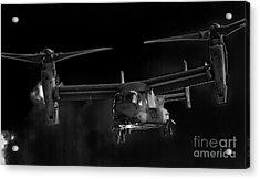 Osprey Night Ops Acrylic Print