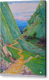 Acrylic Print featuring the painting Other Paths by Matt Konar