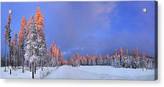 Other Side Of A Winter Sunset Acrylic Print by David Andersen