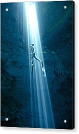 Into The Light Acrylic Print by One ocean One breath