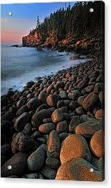Otter Cliffs - Acadia National Park Acrylic Print by Thomas Schoeller