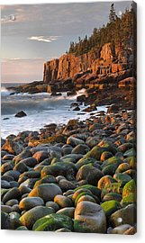 Otter Cliffs At Sunrise Acrylic Print by Stephen  Vecchiotti