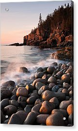 Otter Cliffs Acrylic Print by Patrick Downey