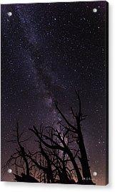 Our Galaxy Acrylic Print by Bill Cantey