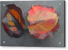 Our Maker's Palette Acrylic Print by Barbara McDevitt