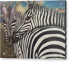 Our Stripes May Be Different But Our Hearts Beat As One Acrylic Print by Kimberlee Baxter