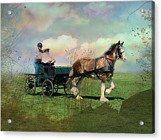Out For A Trot Acrylic Print by Shirley Sirois