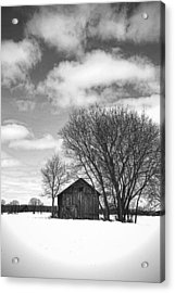 Out In The Sticks Acrylic Print by Thomas Young