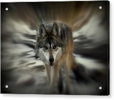 Out Of Nowhere 2 Acrylic Print by Ernie Echols