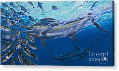 Out Of The Blue Off009 Acrylic Print by Carey Chen