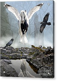 Out Of The Mist Acrylic Print by Judy Wood