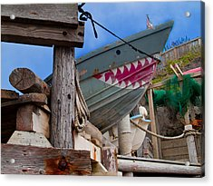 Out Of The Water - There's A Shark Acrylic Print by Bill Gallagher