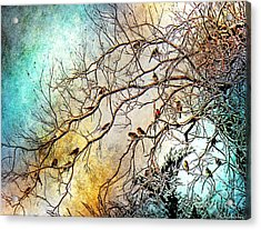 Out On A Limb In Jewel Tones Acrylic Print by Barbara Chichester