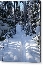 Out On The Trail Acrylic Print by Sandra Updyke