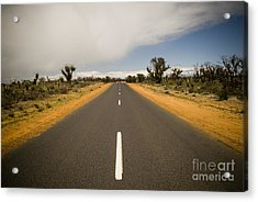 Outback Road Acrylic Print by Tim Hester