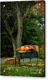 Outdoor Fall Halloween Decorations Acrylic Print by Amy Cicconi