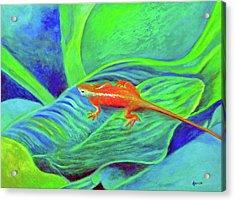 Outer Banks Gecko Acrylic Print