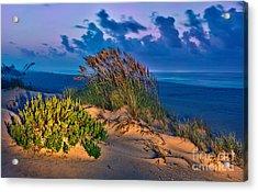 Outer Banks - Ocracoke Sand Dunes Oats Sunrise Acrylic Print by Dan Carmichael