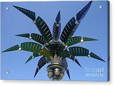 Outer Space Palm Acrylic Print by Ann Johndro-Collins