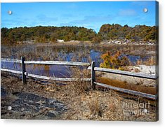 Over The Fence Acrylic Print by Robert Pilkington